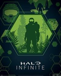 Halo infinite master chief hex - plakat