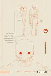 Star Wars Rogue One Robot K-2S0 - plakat