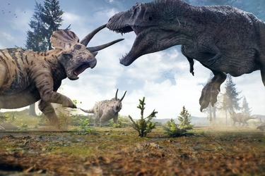 Fototapeta dinozaury 1186