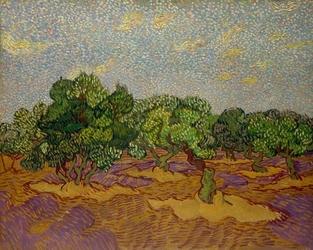 Olive trees, vincent van gogh - plakat wymiar do wyboru: 42x29,7 cm