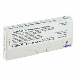 Cissus-ossa D 6 Amp.