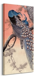 Two peacocks on tree branch - obraz na płótnie