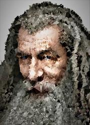 Polyamory - gandalf, władca pierścieni - plakat wymiar do wyboru: 20x30 cm