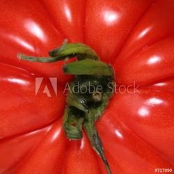 Obraz na płótnie canvas dwuczęściowy dyptyk pomidor