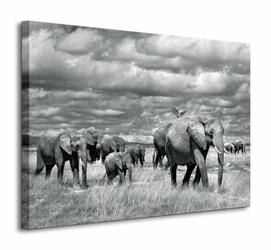 Elephants Of Kenya - Obraz na płótnie