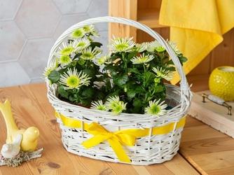 Koszyczek wiklinowy ozdobny na wiosenne kwiaty biały z żółtą wstążką altom design 32 cm
