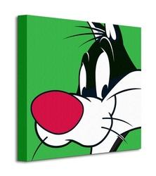 Looney tunes sylvester - obraz na płótnie