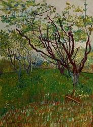 The flowering orchard, vincent van gogh - plakat wymiar do wyboru: 60x80 cm