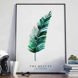 The beauty of nature - plakat w ramie , wymiary - 70cm x 100cm, kolor ramki - biały
