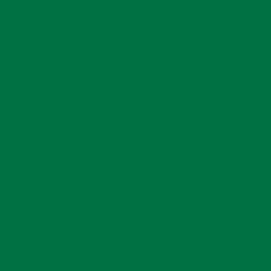Ozdobny puder Efcolor 10 ml - zielony - ZIEL