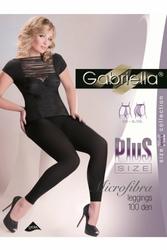 Gabriella 163 plus micro 100 den nero legginsy