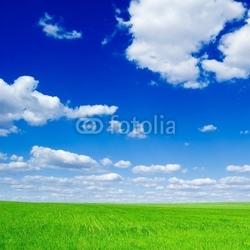Obraz na płótnie canvas czteroczęściowy tetraptyk pole i chmury