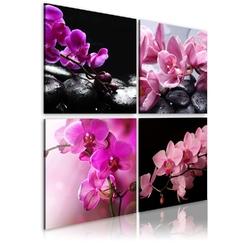 Obraz - orchidee piękniejsze niż kiedykolwiek