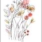 Polne kwiaty - plakat wymiar do wyboru: 21x29,7 cm