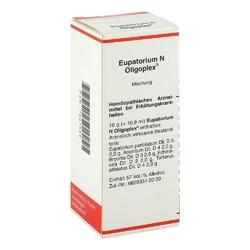 Eupatorium n oligoplex