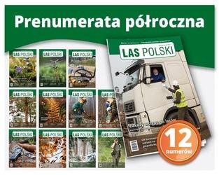 Las polski – prenumerata półroczna 12 numerów