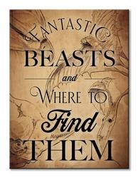 Fantastic beasts beast drawings  - obraz na płótnie