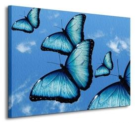 Motyle, papillon - obraz na płótnie
