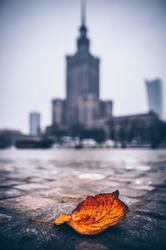 Warszawa pałac kultury i nauki jesienna impresja - plakat premium wymiar do wyboru: 42x59,4 cm