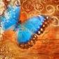 Obraz na płótnie canvas dwuczęściowy dyptyk abstrakcjonistyczny tło z błękitnym motylem