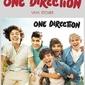 One Direction Album - naklejka