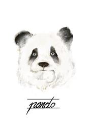 Panda - plakat wymiar do wyboru: 59,4x84,1 cm
