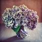 Obraz purpurowe kwiaty hortensji i drewniane serce na stole.
