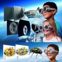Świat oczami zwierząt