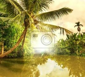 Obraz tropical river