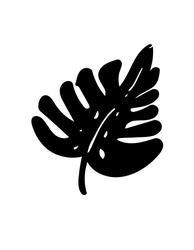 Monstera - plakat Wymiar do wyboru: 21x29,7 cm