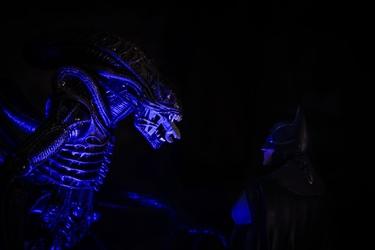 Batman vs alien - plakat wymiar do wyboru: 80x60 cm