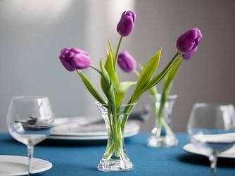 Wazon szklany na kwiaty x edwanex 15 cm