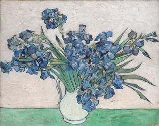 Reprodukcja irises, 1890, vincent van gogh