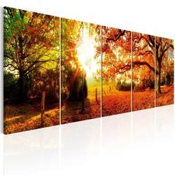 Obraz - zachwycająca jesień