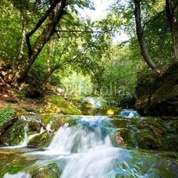 Obraz na płótnie canvas dwuczęściowy dyptyk wodospad leśny