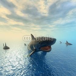 Naklejka samoprzylepna pływanie rekina tygrysa