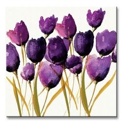 Tulips - obraz na płótnie