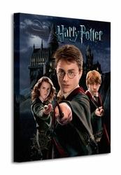 Harry Potter Harry Ron Hermione - Obraz na płótnie