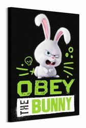 The Secret Life of Pets Bunny - obraz na płótnie