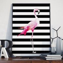 Flamingo - plakat w ramie , wymiary - 40cm x 50cm, ramka - czarna
