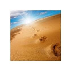 Ślady na piasku - reprodukcja