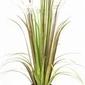 Miloo :: sztuczna trawa dekoracyjna dandelion 70cm