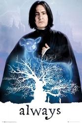 Harry potter sewerus snape patronus łania - plakat