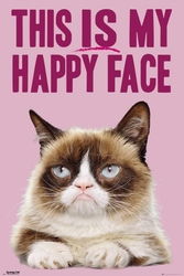 Smutny Kot This is my Happy Face - plakat