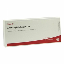 Arteria Ophthalmica Gi D 8 Amp.