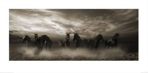 Galopujące konie - reprodukcja