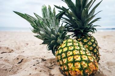 Fototapeta dwa ananasy na plaży fp 895