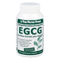 Egcg 100 mg ekstrakt z zielonej herbaty plus kapsułki