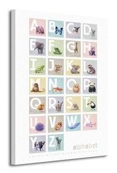 Alphabet boxes - obraz na płótnie
