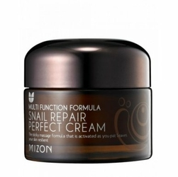 MIZON Snail Repair Perfect Cream W Krem do twarzy z śluzem ślimaka i ekstraktem z Yam 50ml